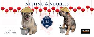 Netting & Noodles