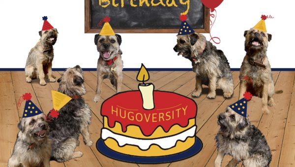 Hugoversity's first birthday