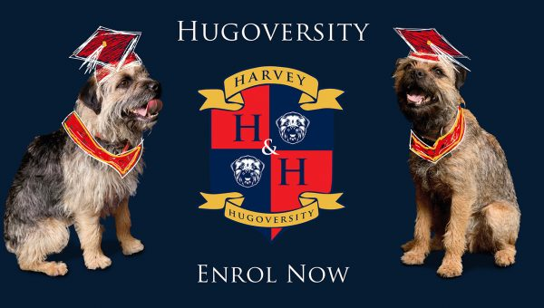 Hugoversity enrol now