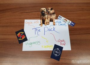 The Pack glossary